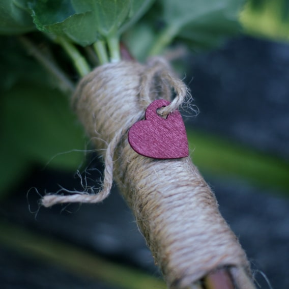 Rustic string with a wooden heart