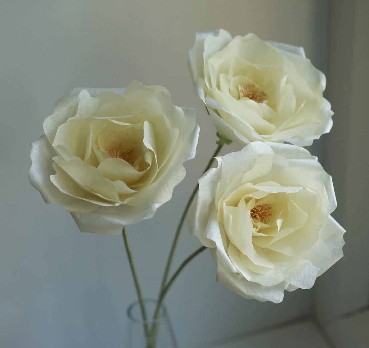 pale yellow paper garden roses