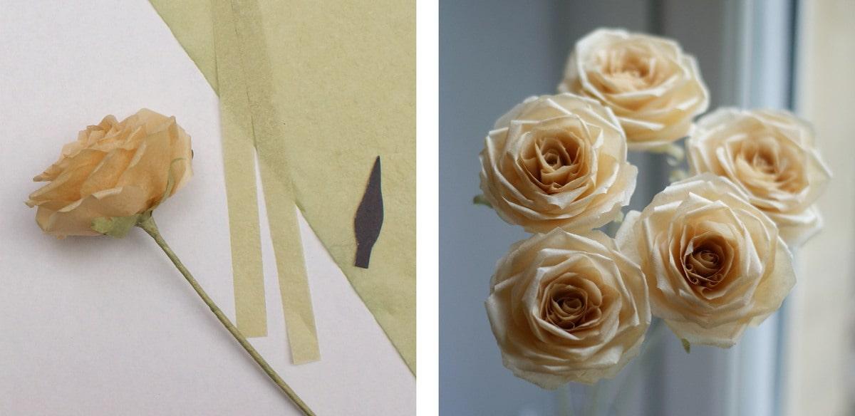 orange tissue paper roses