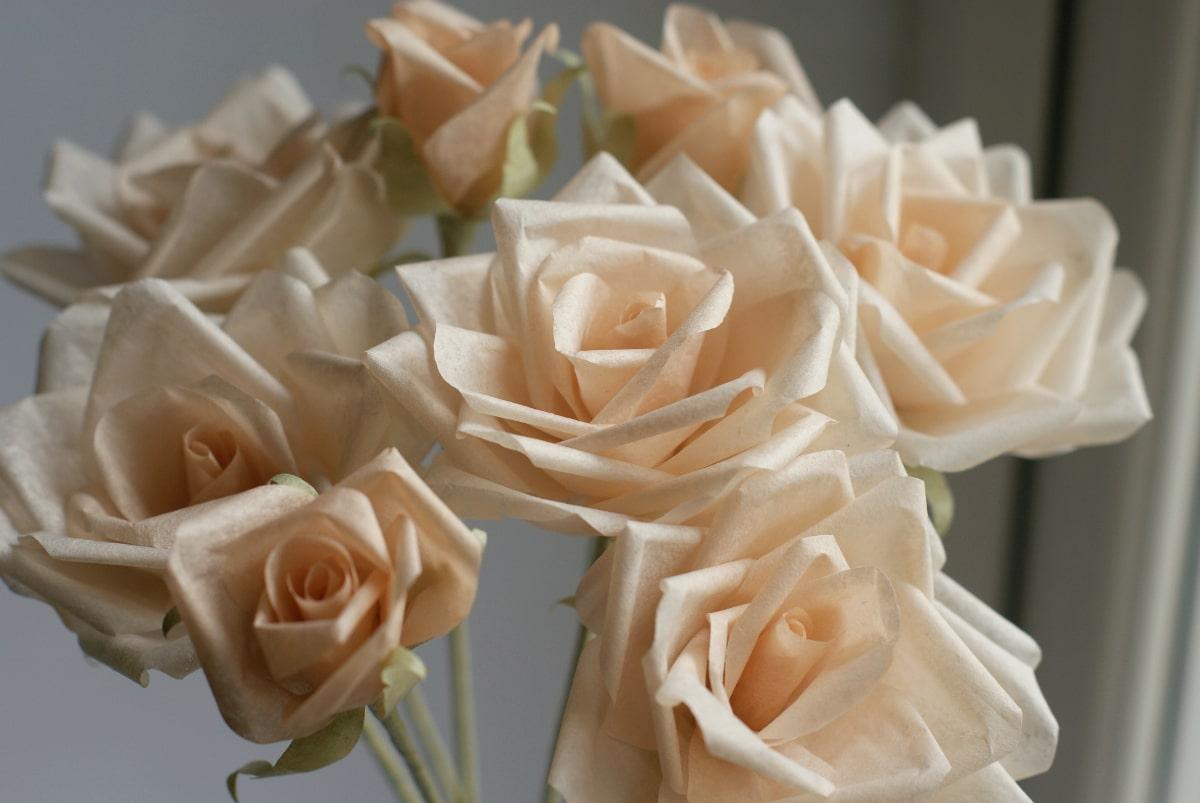 peach tissue paper roses