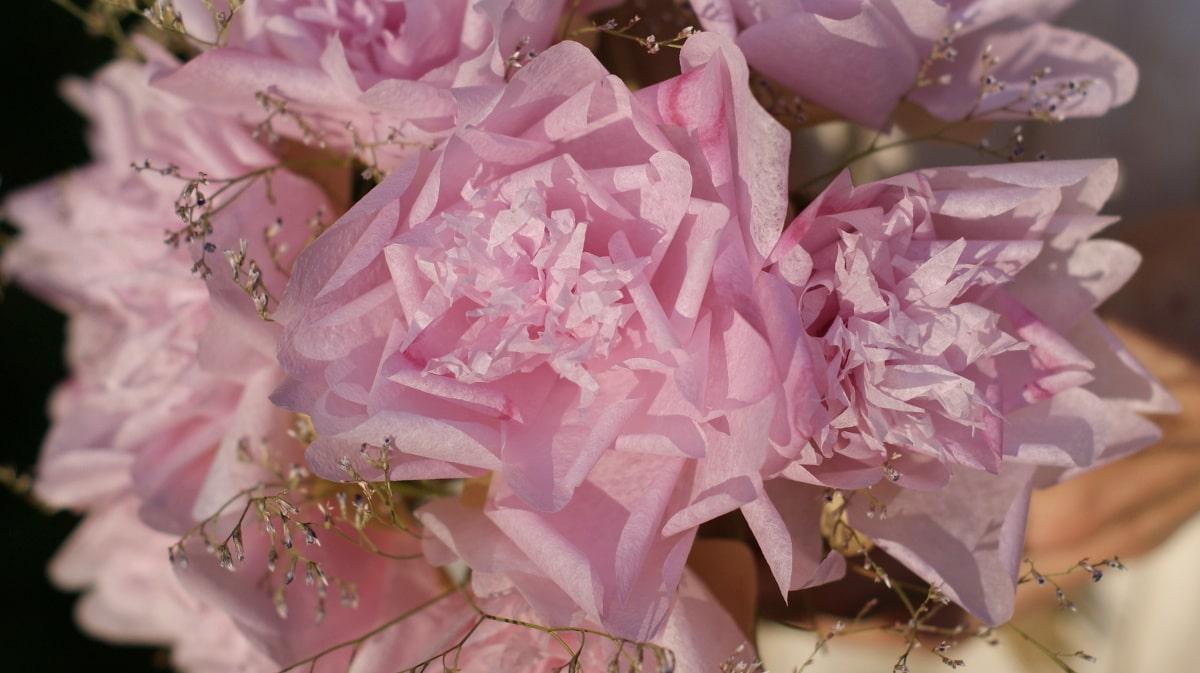 pink tissue paper peonies